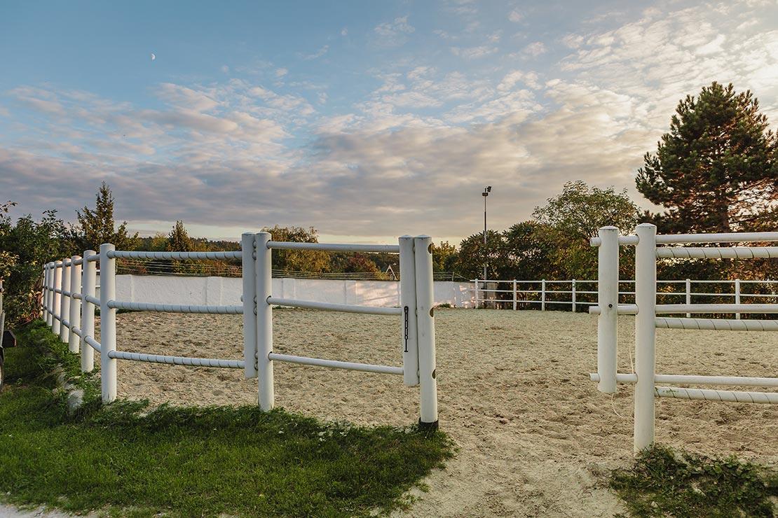 Koppel-für-Pferde---Tierarztklinik-Mitterndorf