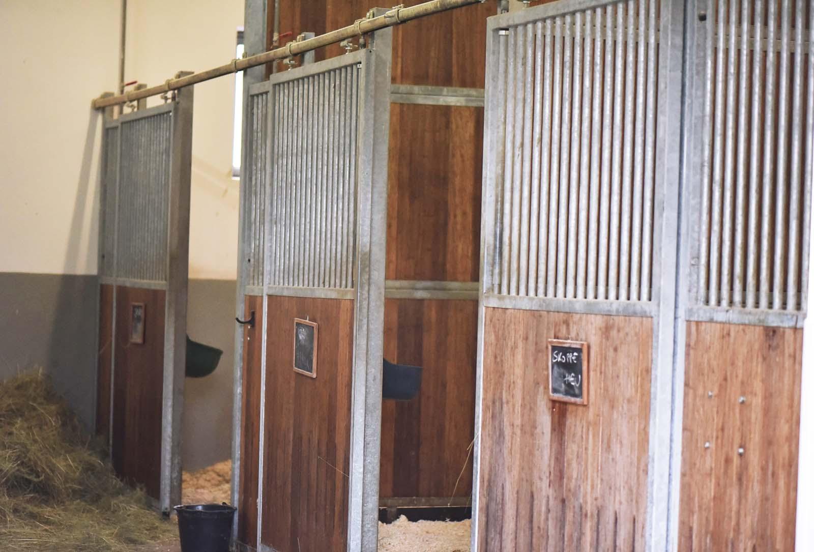 Stationäre Aufnahme Pferde - Tierklinik Mitterndorf